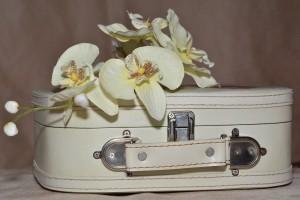 luggage-606542_1280